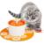 Orange flower estilo elétrico automático 1.6 l fonte de água do animal de estimação do cão/gato tigela de beber com a almofada de silicone