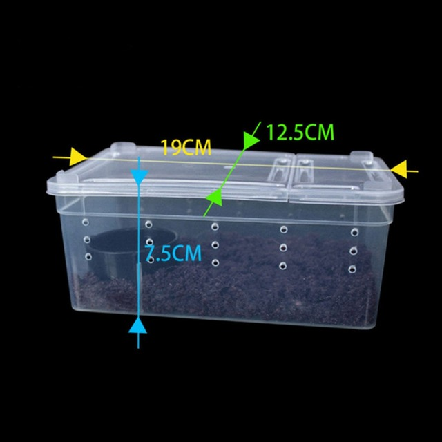 Transparent Plastic Box Insect Reptile Terrarium Clear Breeding Live Food Feeding Box Snakes Lizard Frogs Feeding House