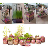 Pallet Nursery Flowers Plants Planting Growth Grow Nutritional Potting Soil Nutrient Pot Clay Garden Accessories Supplies