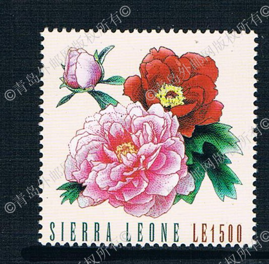 CM0213 China Luoyang STAMPEX Sierra Leone 2009 peony painting painting 1 new stamps 0421 кресло leone