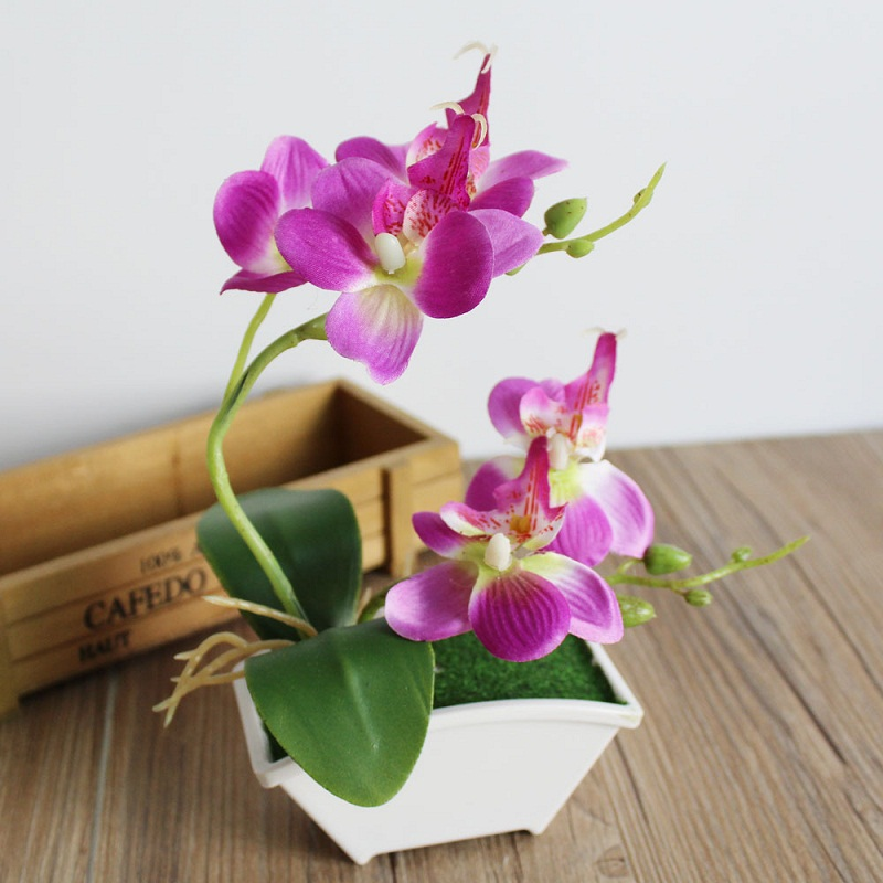 Double Fork Branch Butterfly Orchid Plant Bonsai Creative