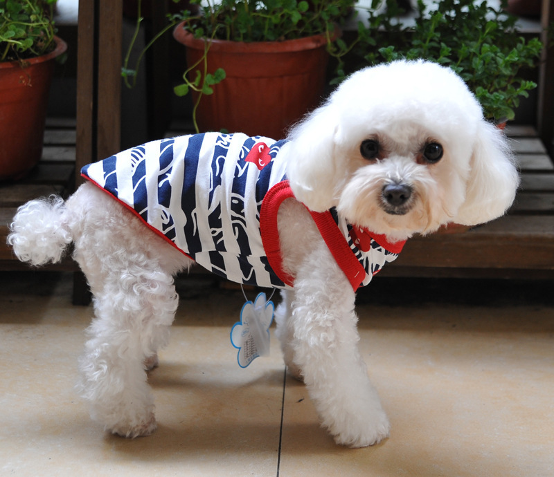 e61bd51b07db Pet dog clothes summer vest teddy/poodle summer wear T shirt puppies puppy  clothes Clothing-in Dog Vests from Home & Garden on Aliexpress.com |  Alibaba ...