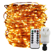 Remote Timer Dimable Led String Light 500 1000 LEDs Starry Lights 50M 100M Copper Wire Christmas