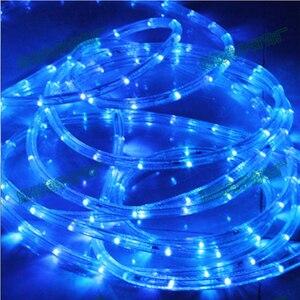 Image 3 - עמיד למים קשת צינור חבל led רצועת חג המולד אור בחוץ חג קישוט אורות 2M 20M AC220V IP65 led rgb הרצועה