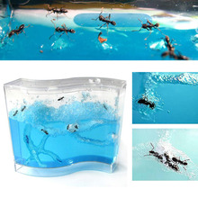 Pet Toy Ant House Educational Pet Colorful 73 * 32 * 78mm Sa