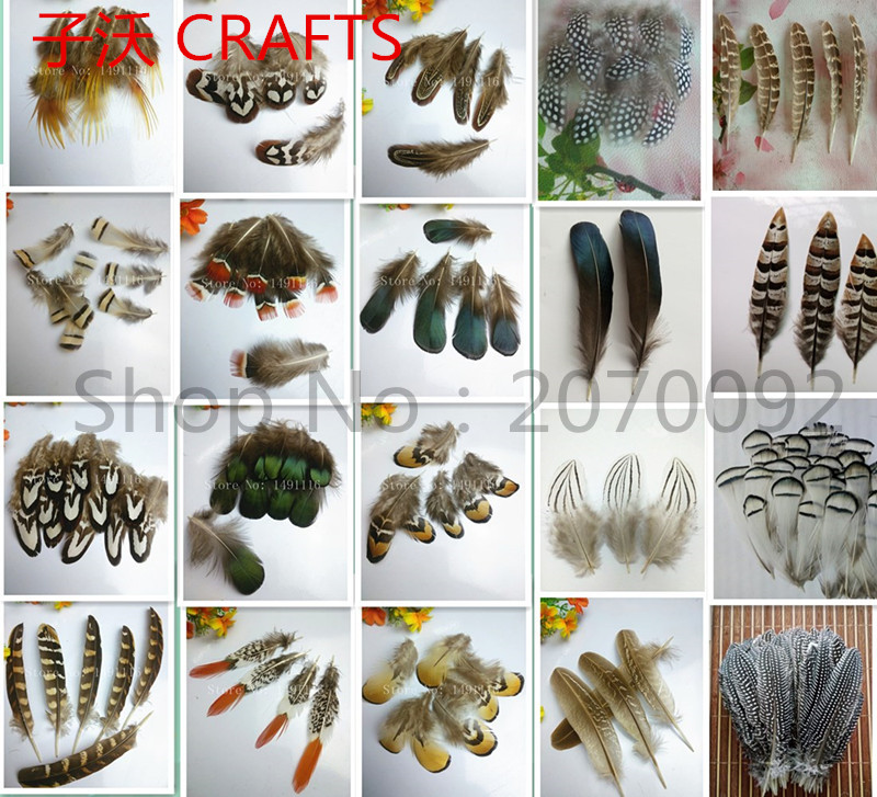 20 pieces pack of high quality natural pheasant feathers diy handicraft jewelry accessories in Feather from Home Garden