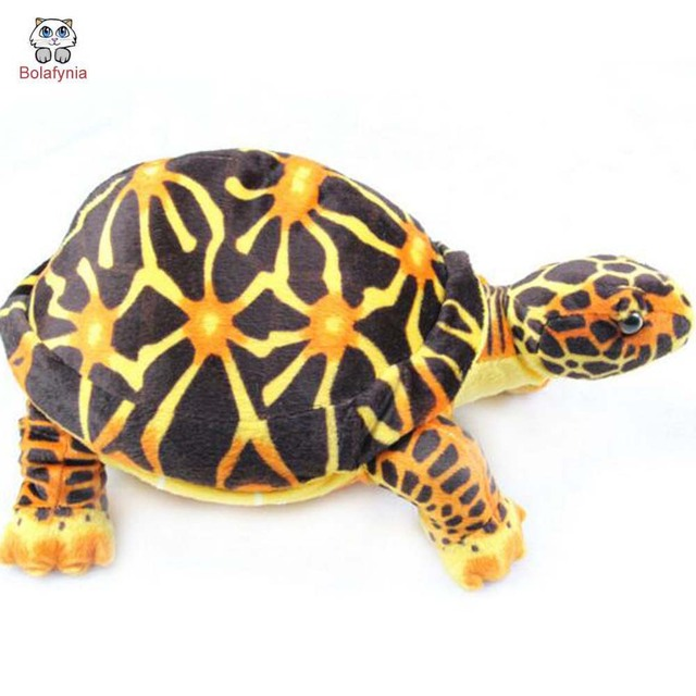 BOLAFYNIA Children Plush Stuffed Toy Turtle two color see animal Baby Kids Toy for Christmas Birthday Gift