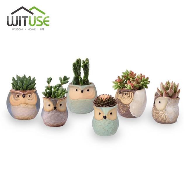 Wituse cheap potted owl shape flower pots for bonsai meat plant wituse cheap potted owl shape flower pots for bonsai meat plant garden pots planters home workwithnaturefo