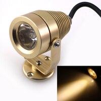 Golden DC12V 1 3W LED Underwater Lights Warm White Lighting Waterproof IP68 Underwater Lamp For Fountain
