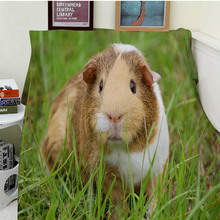 Blankets Comfort Warmth Soft Cozy Air conditioning Easy Care Machine Wash Funny Guinea Pig Grass