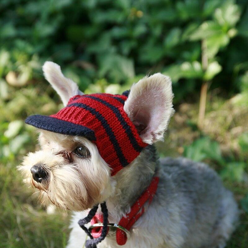 De luxe À Tricoter Chien-accessoires Chapeau Soleil-preuve Main Petit Petit Animaux Chiot Animaux Chat D'hiver Toilettage Caps Chihuahua yorkov