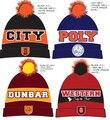 2016 Custom gorros gorras de invierno sombrero de encargo tejer sombreros con su propio diseño del logotipo envío gratis