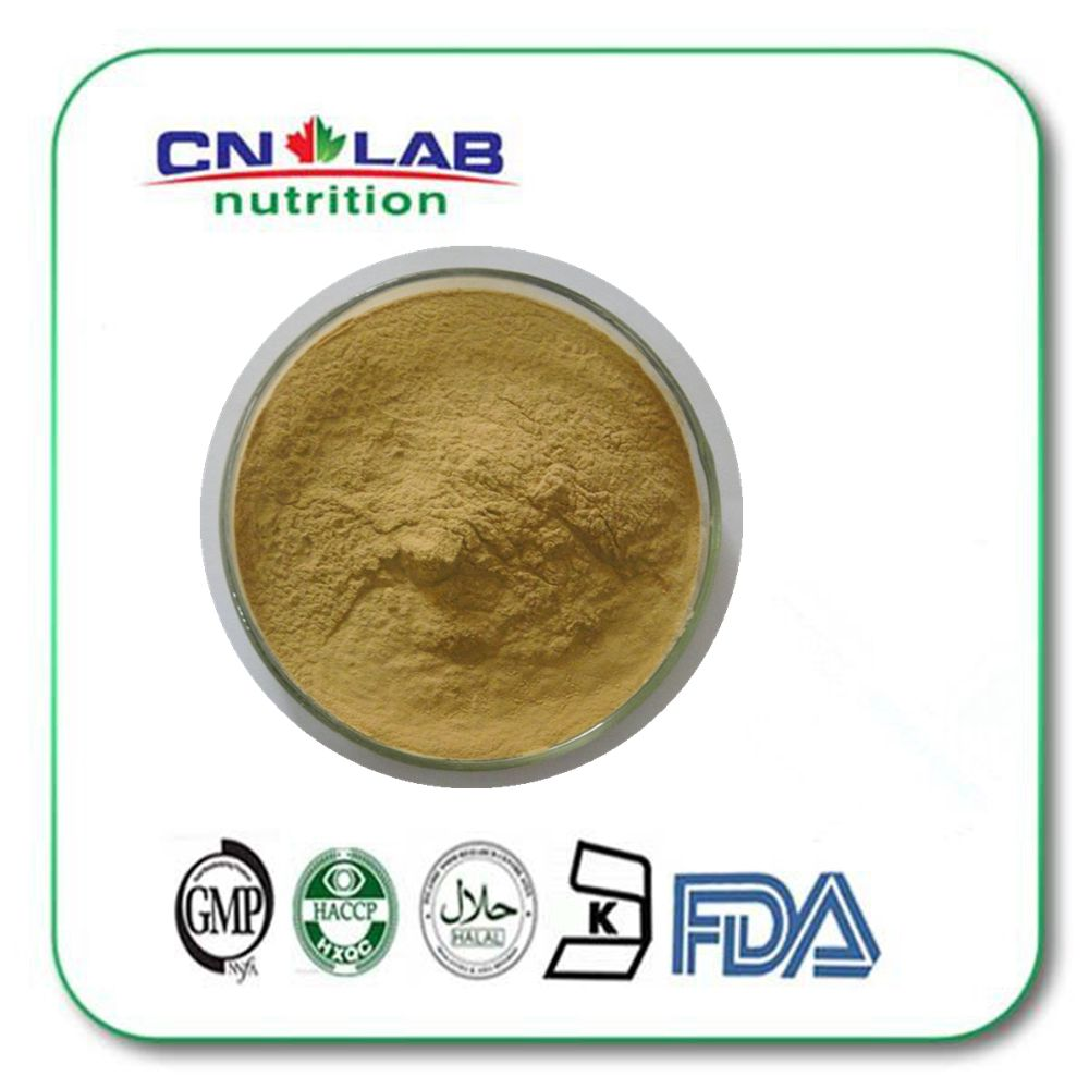 Natural 30% kava extract powder 100g