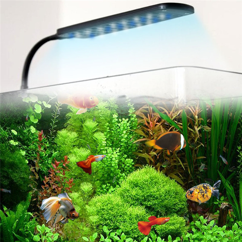 White blue light fish tank aquarium clip lamp kit flexible for Blue light for fish tank