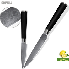 High quality kitchen knife high hardness 5 inch utility 3.5 inch paring knives 2 pcs set 9Cr18Mov Damascus steel cooking tools