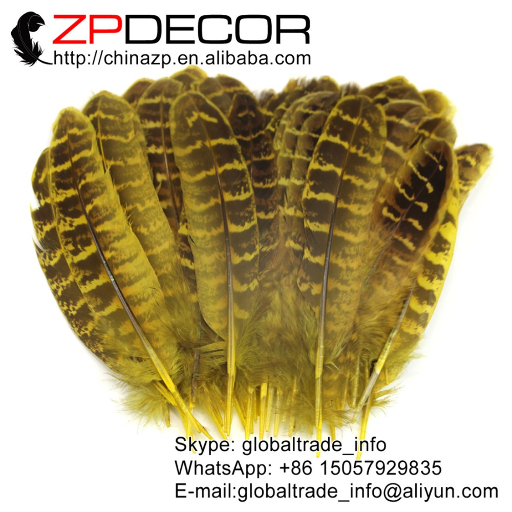 yellow ringneck hen feathers