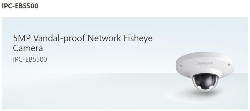 Dahua IPC-EB5500 5MP CMOS Vandal-proof Network Fisheye Dome Camera Micro SD memo