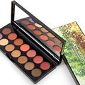 Newest Professional 14 Color Shimmer Matte Eye Shadow Palette Pretty Case Women Pretty Makeup Set Mineral Fantastic Eye Shadow
