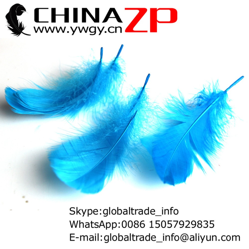 Gold Supplier CHINAZP Factory 100pcs/lot Unique Dyed Turquoise Blue Fluffy Goose Coquille Feathers