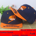 Аниме Fairy Tail бейсболка Вс hat косплей подарок Хип-Хоп НОВАЯ Мода 2015