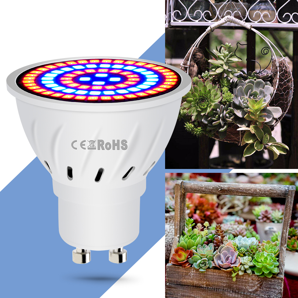 E14 Plant Grow Light E27 LED Seedling Bulbs Full Spectrum B22 Phyto Lamps 4W 6W 8W GU10 Led Indoor Growing Light GU5.3 Grow Box