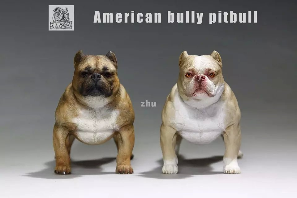 1/6 scale dog about 15cm.American bully pitbull for 12action figure doll Props, model toys Gift Decoration, collectible toy. 1 6 scale model metal gear solid v the phantom d dog diamond dog about 23cm collectible figure model toy gift