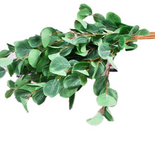 10pcs Fake Single Stem Eucalyptus Leaf Bunch Simulation Greenery Decorative Artificial Green Plant