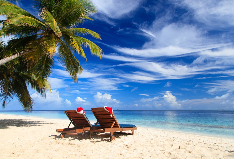 Laeacco Tropical Sea Beach Lounge Chair Palm Tree View Photography Background Customized Photographic Backdrop For Photo Studio