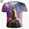 Mr.1991 Newest 11-20 years teens tshirt for kids girls lovely animal 3D printed children's t-shirt America style unisex DT19