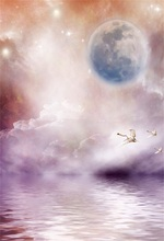 Laeacco Sea Birds Planet Nebula Clouds Fantasy Scene Photography Backgrounds Customized Photographic Backdrops For Photo Studio