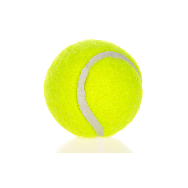 HOOPET Dog Toy Six Tennis Balls Bite-resistant Dogs Puppy Teddy Training Product