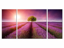 3 Pieces Lavender flowers Canvas Picture Art Oil Painting Home Decoration paintings Print Flower for Living Room
