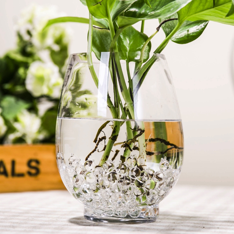 Transparent Glass Bottle Green Dill Egg Hydroponic Bamboo Water For