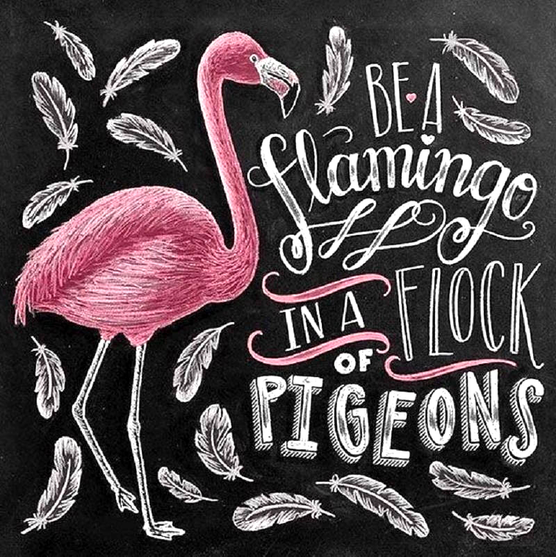 Diamond Painting Full Square Chalkboard Drawing Flamingo Daimond Painting Embroidery Cross Stitch Mosaic Rhinestone LE01023