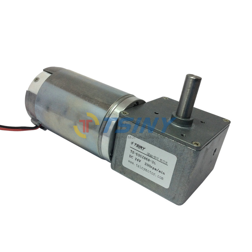 High Performance 24v Electric Dc Worm Gear Motor 200rpm In