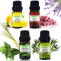 New 100% Pure Aromatic Grade Essential Oil 10ML Fragrance Aroma Humidifier Natural Essential Oil Relieve Stress Scent Skin Care Essential Oil