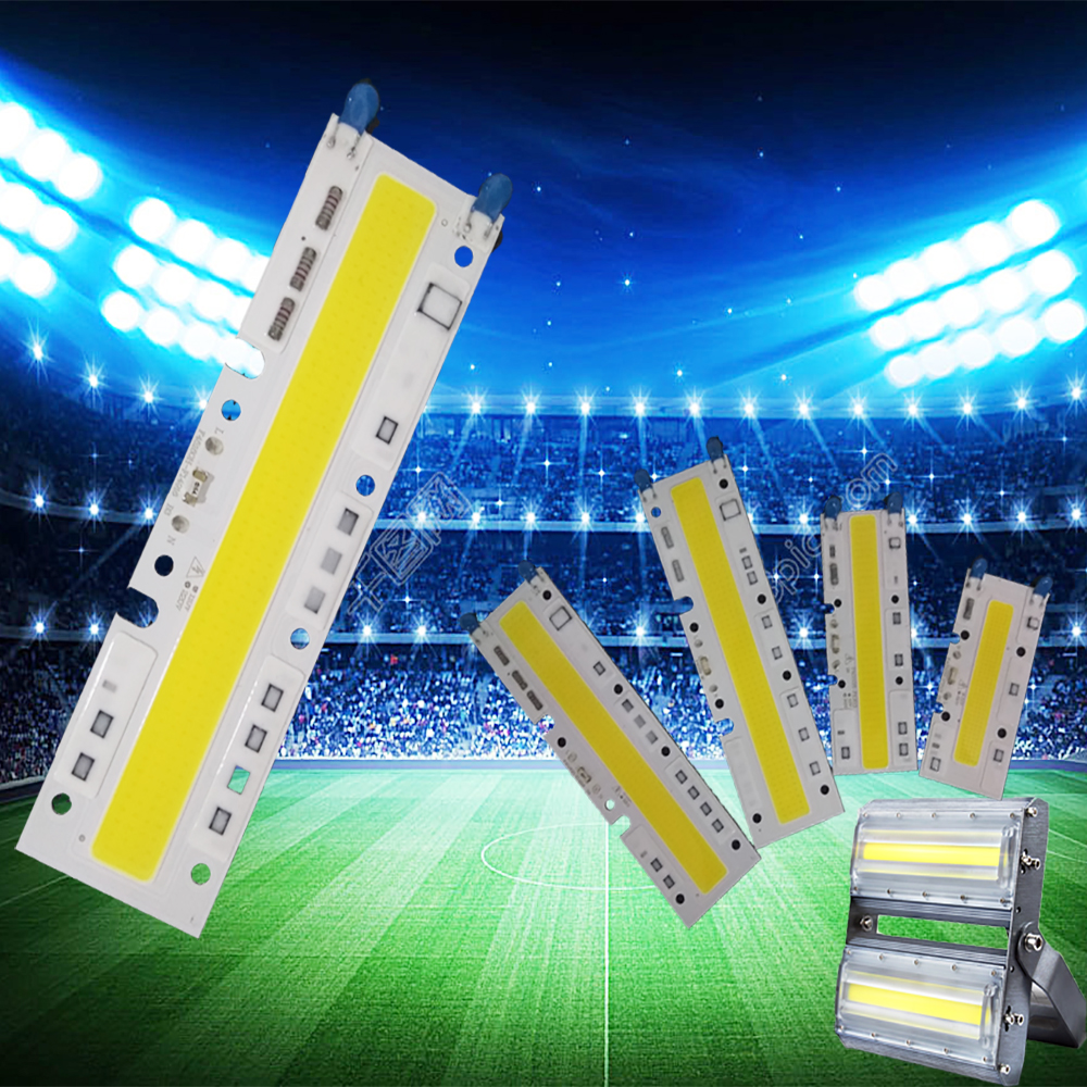 High Power AC 220V 50W 70W 100w Led Lamp Cob Chip Led Smart IC Driver Fit For DIY LED Spotlight Bulb Floodlight