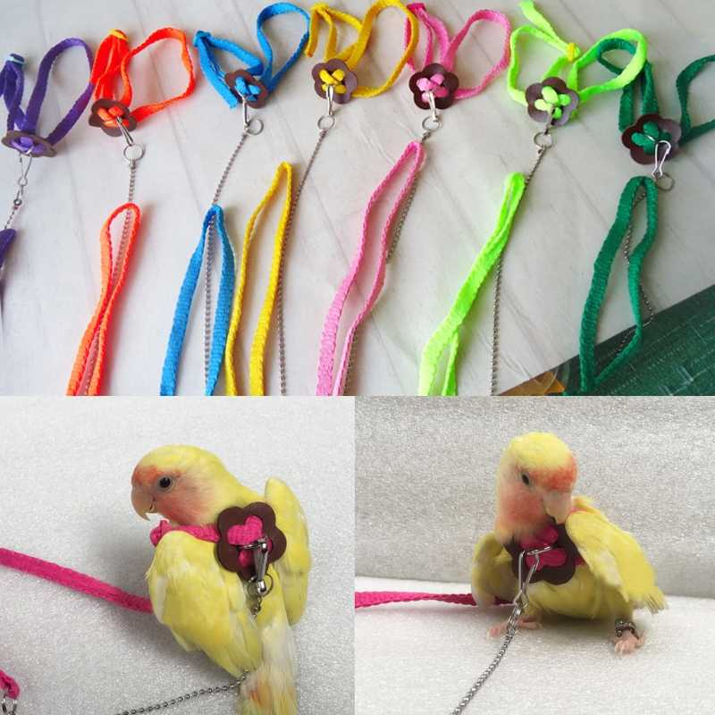 Colorful Parrot Uccello Guinzaglio Outdoor Regolabile Harness Formazione Corda Flying Cross Band