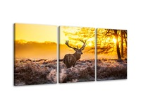 3 Piece Deer Elks in Autumn Sunset Forest Canvas Prints Wall Art Paintings Home Decorations Modern Animal Scenery Landscape