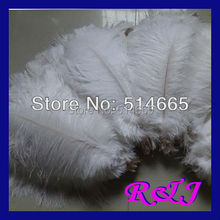Free shipping 200PCS/LOT 12-14 inches 30-35cm white Ostrich drab feather ostrich plumes