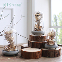 Miz Home 1 Set Terrarium Seal Flower Vase Terrarium Succulents Plant Home  Decor Gift Micro Landscape