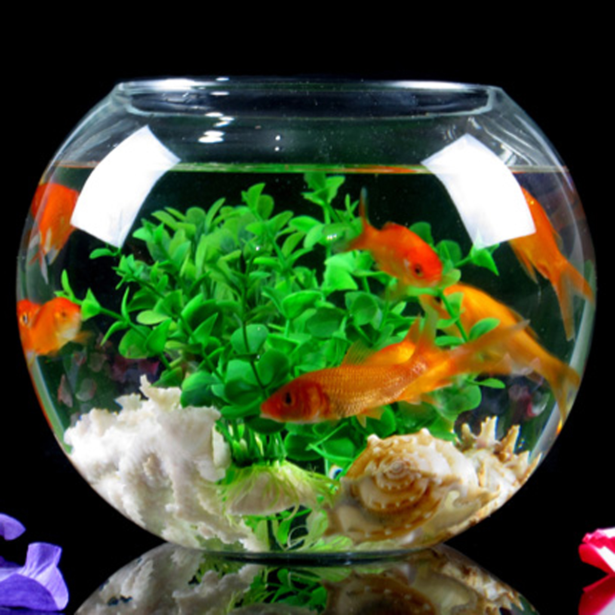 Flower vase with fish - Aliexpress Com Buy Modern Fashion Wo Transparent Glass Ball Fish Tank Living Room Decoration Vase Flower Decoration Measurement From Reliable Vase Price