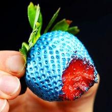 300pcs/bag colorful Strawberry Seeds Rare giant rainbow Fragaria ananassa L bonsai pot fruit Foliage seeds for home garden plant