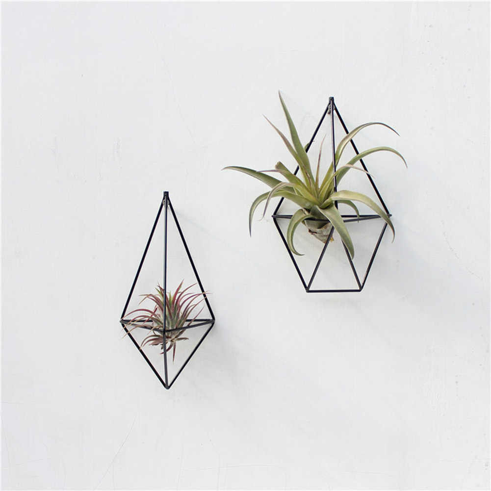 Air Plant Wall Holder Wall Mounted Air Plants Holder Irregular Geometric Metal Hanging Rack For Branch Eave Ceiling E2s