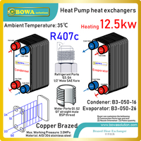 42000BTU water source heat pump water heater's BPHEs are working together with titanium coils to meet different water quality