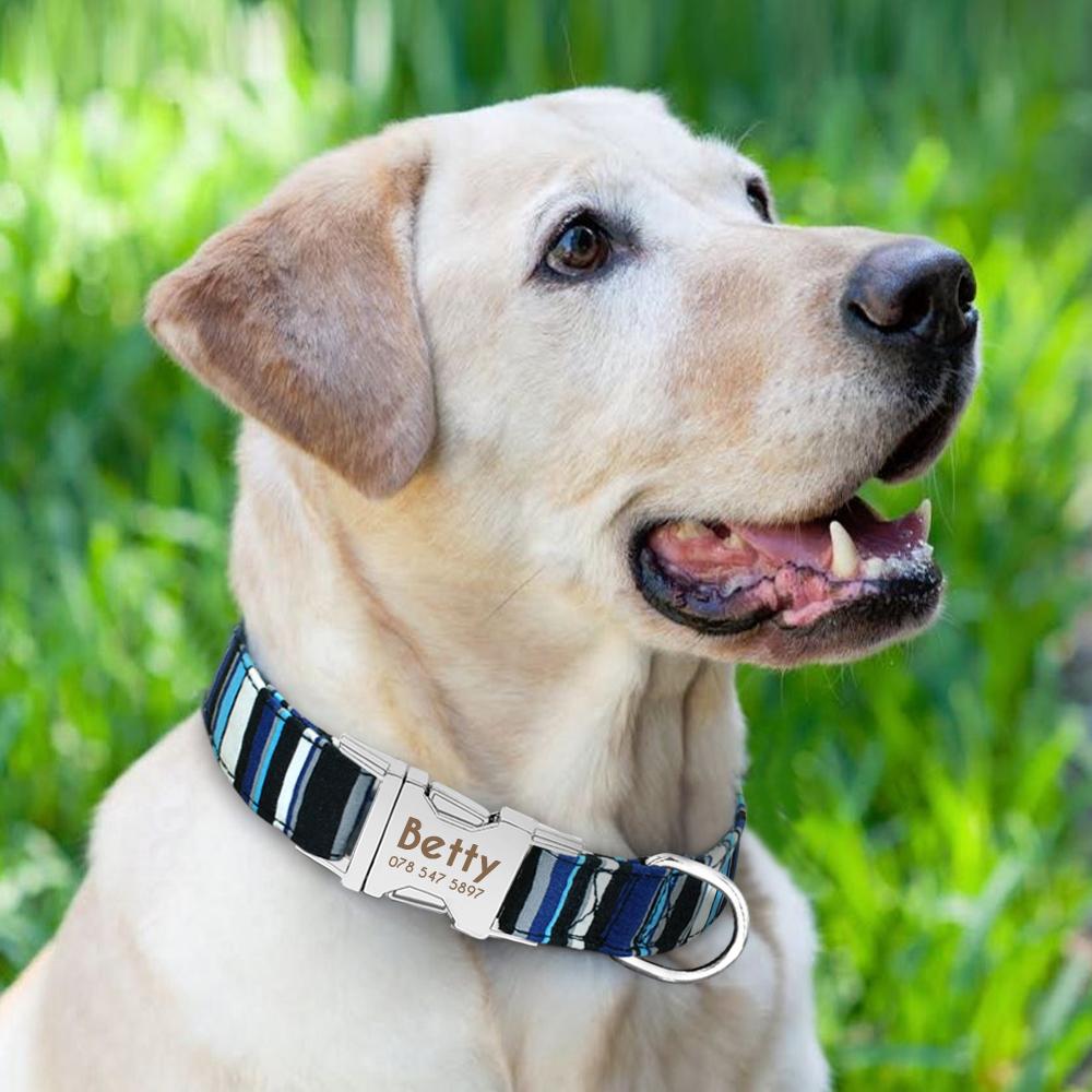 Collar de perro de Nylon personalizado con placa de identificación grabada 21