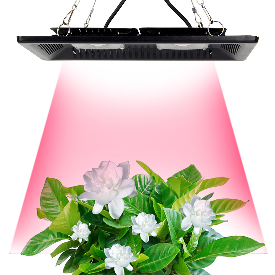 Led Grow Light Full Spectrum 100W 200W Waterproof IP67 COB Grow LED Lamp for Plant Indoor Outdoor Hydroponic Greenhouse Lighting high power full spectrum led grow light 200w with cob reflector for hydroponic grow box medical plants supplemental lighting