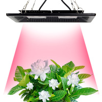 Led Grow Light Full Spectrum 100W 200W Waterproof IP67 COB Grow LED Lamp For Plant Indoor