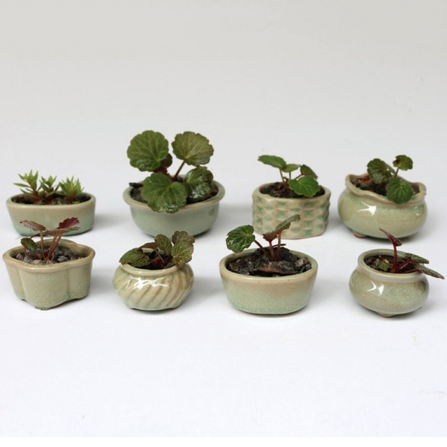 8pcs Set Mini Ceramics Flower Pot Micro Garden Planter Planting Green Desktop Ceramic Home