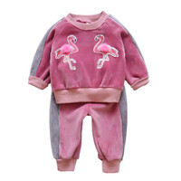 Sport Baby Suit Set Girls Autumn For Children Sweatshirts Clothing Child Sport Underwear Long Sleeve Tee Shirt Pants 2018